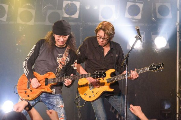 """face to ace """"LIVE GOES ON 2020 SPRING"""""""